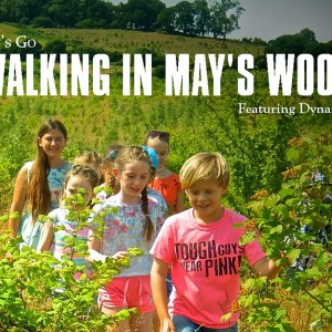 Walking In May's Wood © Linda Lamon 2017